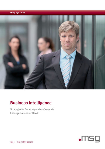 msg Brochüre: Business Intelligence