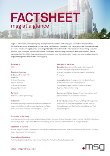Fact Sheet: msg at a glance