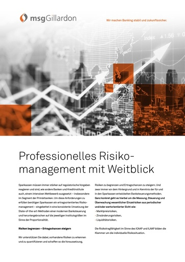 Professionelles Risikomanagement mit Weitblick